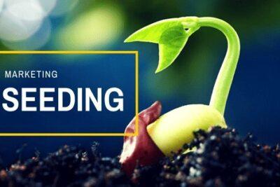 """Seeding -""""Gieo mầm"""" thành công cho kế hoạch marketing"""